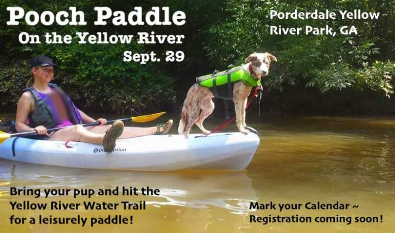 PoochPaddle2018 5