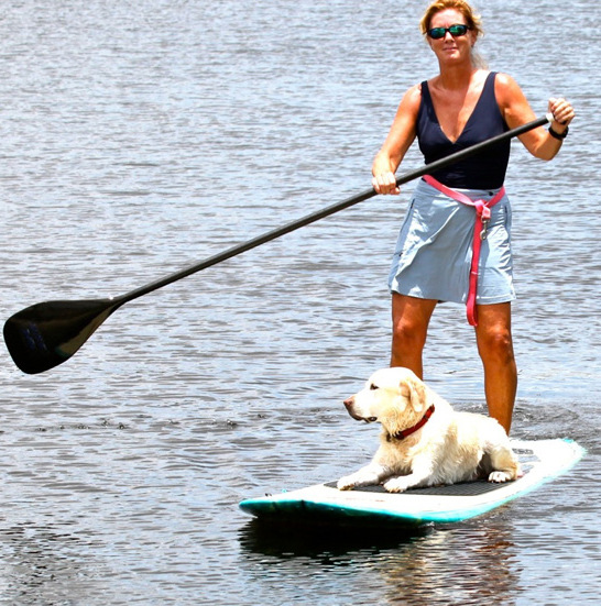 paddle board 4