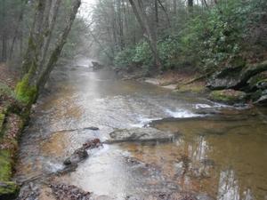 Etowah River Trail UpstreamHCRLC