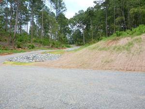 Flint River Access Road 2
