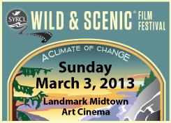 web-filmfest13
